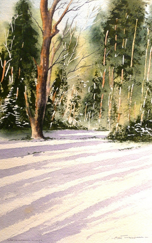 Beginners watercolour classes in Norfolk